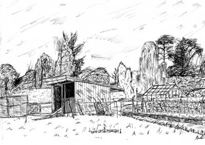 Pen and Ink Sketch by Tom Laughton